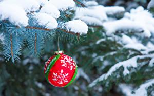 Картинки Новый год Зима Ель Ветки Снег Шарики Размытый фон