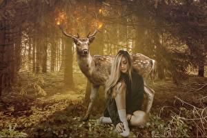 Картинки Олени Леса Сидит Девушки Животные
