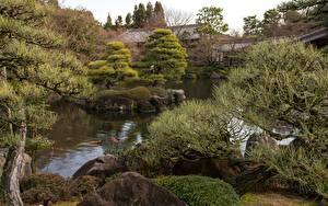 Фотография Сады Япония Камни Пруд Ветка Koko-en garden, Himeji город