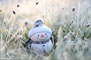 Обои Траве Снеговик Шапка Шарфе Боке