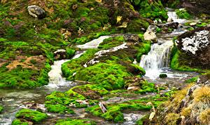 Картинка Япония Парк Водопады Мха Nakanojo Chatsubomigoke Park Gunma prefecture Природа