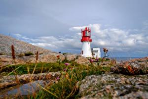 Фотография Маяк Норвегия Скале Lindesnes Природа