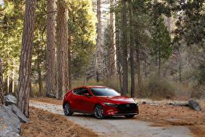Обои Мазда Красная Металлик 2020 Mazda3 Skyactiv-G Hatchback машины