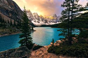 Обои для рабочего стола Горы Озеро Канада Пейзаж Парки Дерева Банф Alberta, Moraine Lake Природа