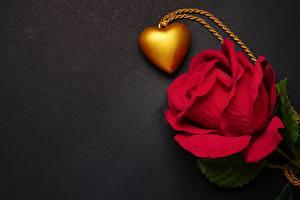 Фото Роза День всех влюблённых Сердечко Красные Шаблон поздравительной открытки цветок