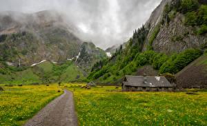 Обои Швейцария Горы Луга Альп Трава Appenzell Природа