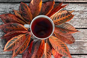 Картинка Чай Осенние Доски Чашка Листья Пища