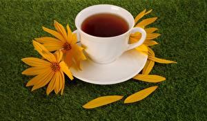 Обои Чай Чашке Трава Лепестки Еда