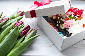Картинки Тюльпан Коробки Подарок