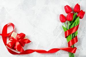 Картинка Тюльпаны Лента Шаблон поздравительной открытки Подарки Цветы