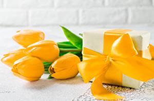 Картинка Тюльпан Желтая Бантик Подарков цветок