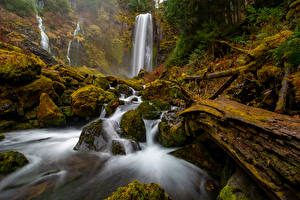 Фотография Штаты Парк Водопады Камень Вашингтон Утес Мха McClellan Falls