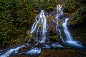 Фото Штаты Водопады Утес Мха Panther Creek Falls Gifford Pinchot National Forest Природа