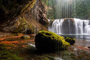 Картинка Штаты Водопады Камни Скала Мха Gifford Pinchot National Forest