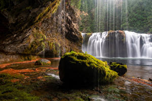 Картинка Штаты Водопады Камни Скала Мха Gifford Pinchot National Forest