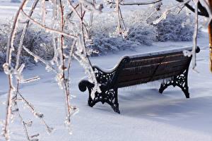 Обои Зимние Ветвь Скамейка Снегу