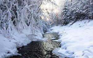 Фотография Зимние Ручеек Снега