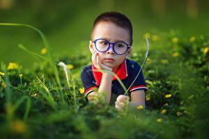 Картинка Азиатки Боке Мальчик Очков Смотрит Траве