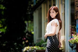 Обои Азиатки Боке Юбки Шатенки Девушка Девушки