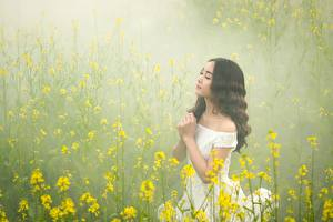 Фотографии Азиатки Тумане Брюнетки Платья Рука девушка