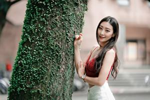 Обои Азиатка Ствол дерева Рука Размытый фон Волос Смотрит девушка