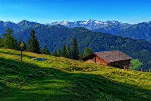Картинка Австрия Гора Луга Альп Luppitsch Styria Природа