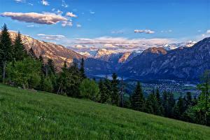 Фото Австрия Гора Альпы Трава Деревьев Riedln Bad Goisern Природа