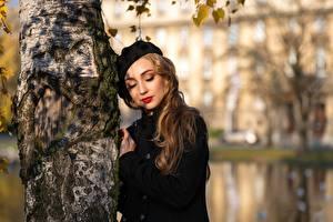 Картинки Боке Ствол дерева Пальто Шатенки Миленькие Береза Девушка Девушки