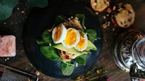 Фотографии Бутерброд Яйцо Завтрак Базилик душистый Пища