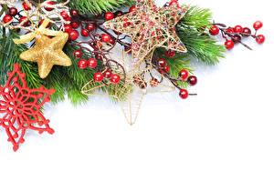Фотография Новый год Ягоды Белым фоном На ветке Снежинки Звездочки Шаблон поздравительной открытки