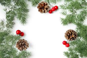 Фото Новый год Ягоды Белый фон Ветки Шишки Шаблон поздравительной открытки