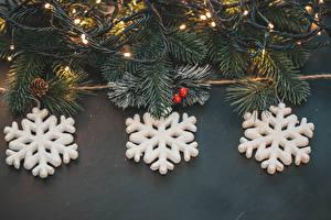 Картинка Рождество Ветвь Шишка Снежинка Электрическая гирлянда