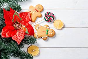 Картинки Рождество Печенье Леденцы Доски Ветвь Дизайна