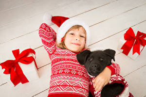 Фотография Новый год Собаки Девочки Улыбка Взгляд Шапки Подарки Свитер Дети