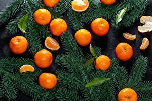 Картинка Новый год Мандарины Ветки