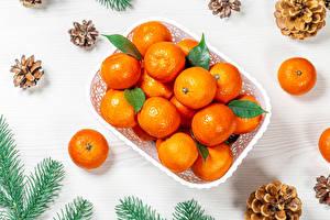 Фото Новый год Мандарины Ветки Шишки Еда