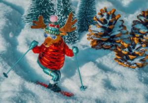 Обои Олени Лыжный спорт Игрушка Шишка Снега