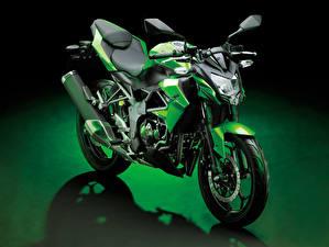 Фотография Kawasaki Зеленый 2014-19 Z250SL Worldwide