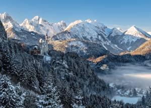 Фото Гора Зима Лес Замок Германия Пейзаж Альпы Бавария Neuschwanstein Castle