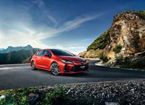 Обои Тойота Красных 2019 Corolla Sport Sedan автомобиль