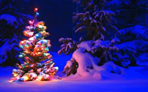 Обои для рабочего стола Зимние Рождество Ночные Снега Ели Новогодняя ёлка Электрическая гирлянда Природа