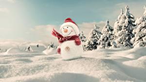 Фотографии Зима Новый год Снег Снеговики Шапки Шарф