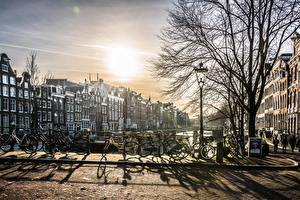 Фото Амстердам Голландия Рассвет и закат Велосипеды Дерево Уличные фонари город