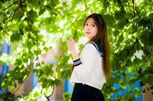Фотография Азиатки Боке Ветвь Листва Шатенки девушка