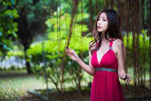 Фото Азиаты Боке Платья Руки Декольте молодые женщины