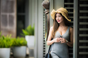 Обои Азиатки Боке Платья Рука Шляпа Шатенки Милые Девушки