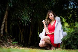 Картинка Азиатки Боке Сидящие Платья Пальто Шатенки Смотрит