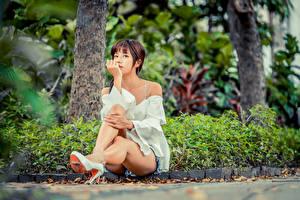 Фотография Азиаты Размытый фон Сидящие Ног Шатенка девушка