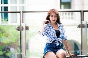 Картинки Азиатки Боке Сидя Шорты Рубашки Шатенки молодая женщина