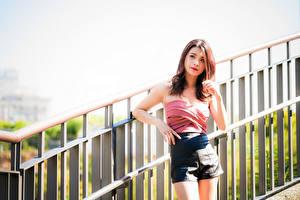 Обои Азиатки Позирует Руки Шорт Шатенки молодые женщины